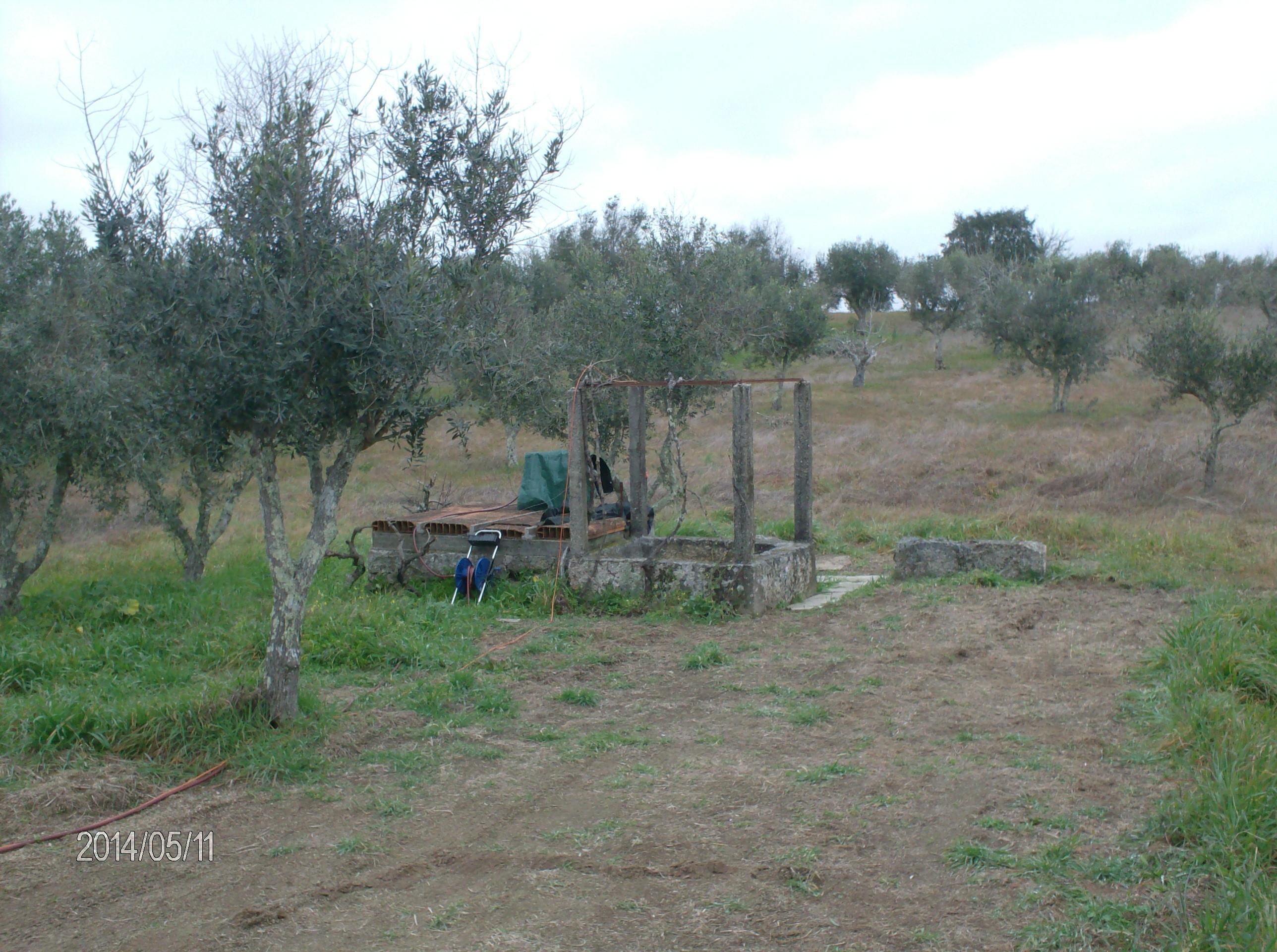 Vente terrain agricole nisa portalegre portugal s tio for Agrandissement maison terrain agricole