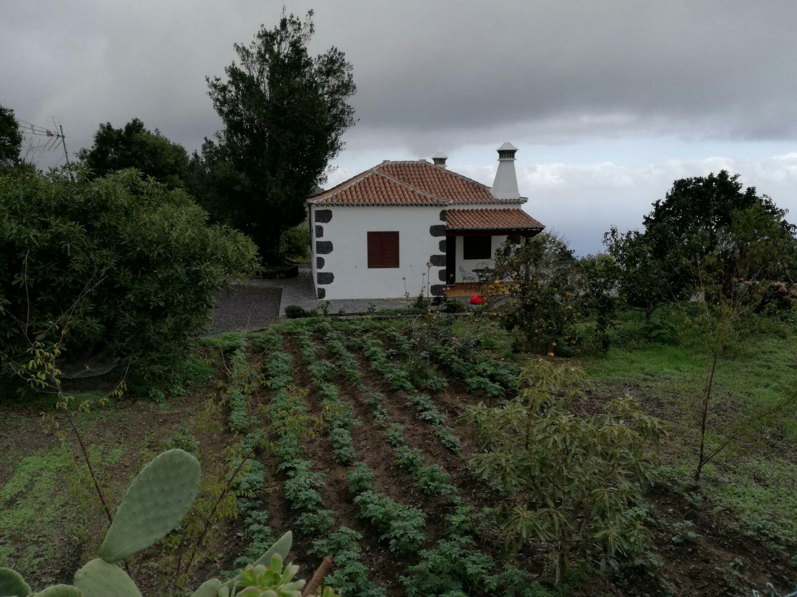 Venta casa de campo los llanos de aridane santa cruz de tenerife islas canarias espana mazo - Casas de alquiler en los llanos de aridane ...