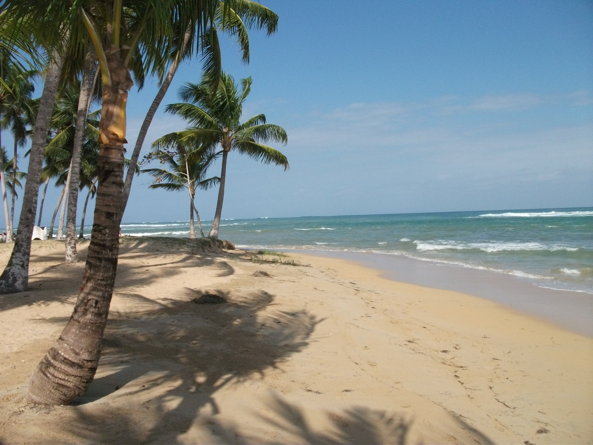 For sale 1 bedroom las terrenas saman dominican for Las terrenas