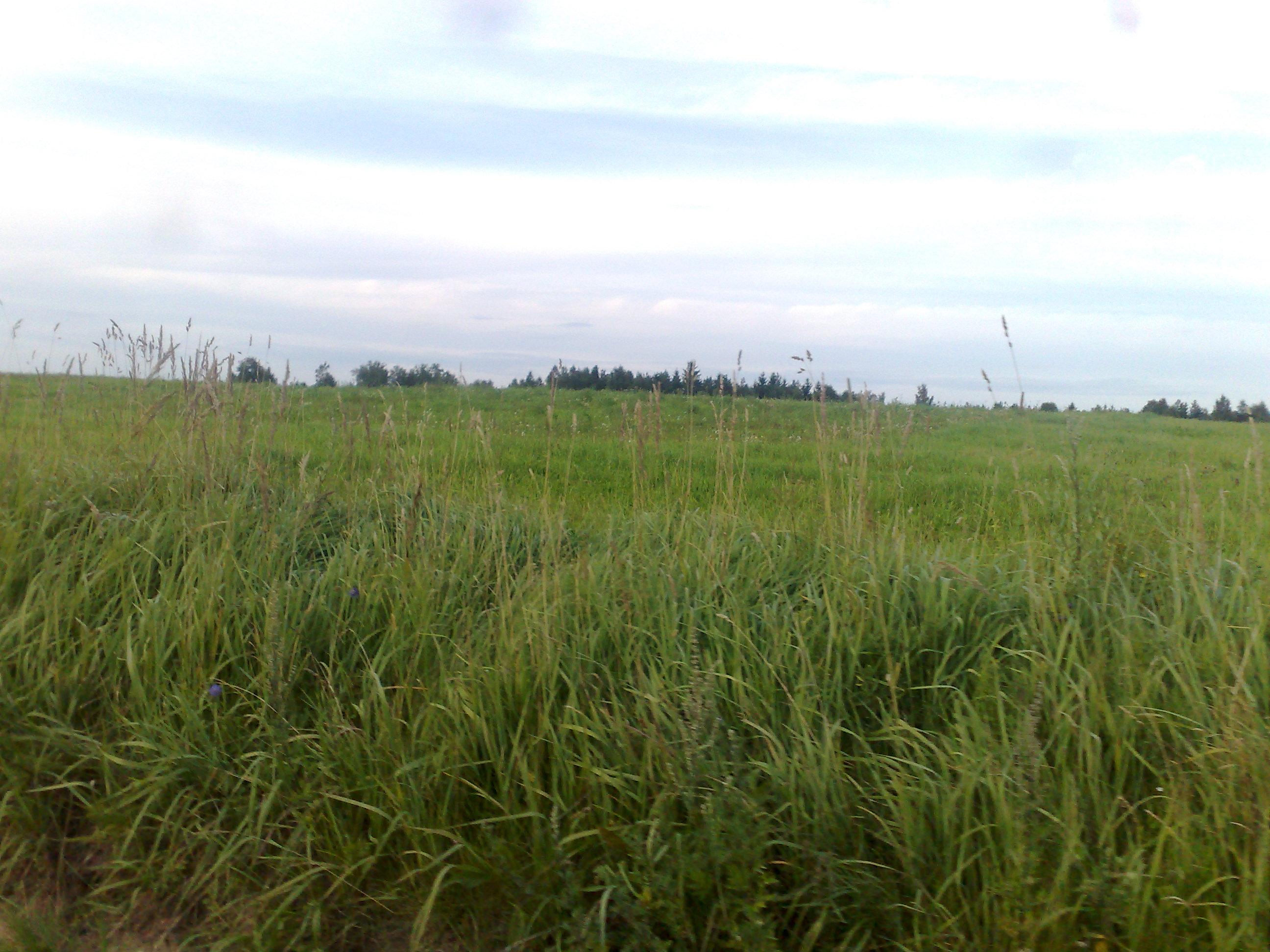 Vente terrain agricole vecpiebalga c sis lettonie for Construire une maison sur un terrain agricole