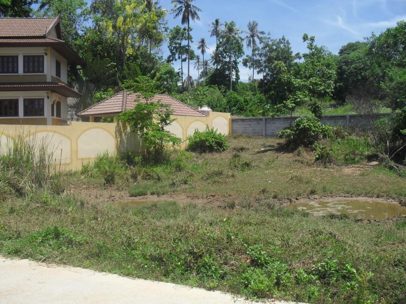 Vente terrain agricole lamai hua thannon koh samui tha lande hua thannon koh samui for Construire une maison sur un terrain agricole