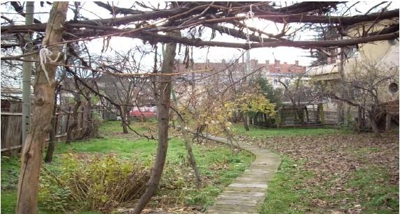 Vente terrain agricole cluj napoca cluj roumanie e grigorescu for Construction terrain agricole