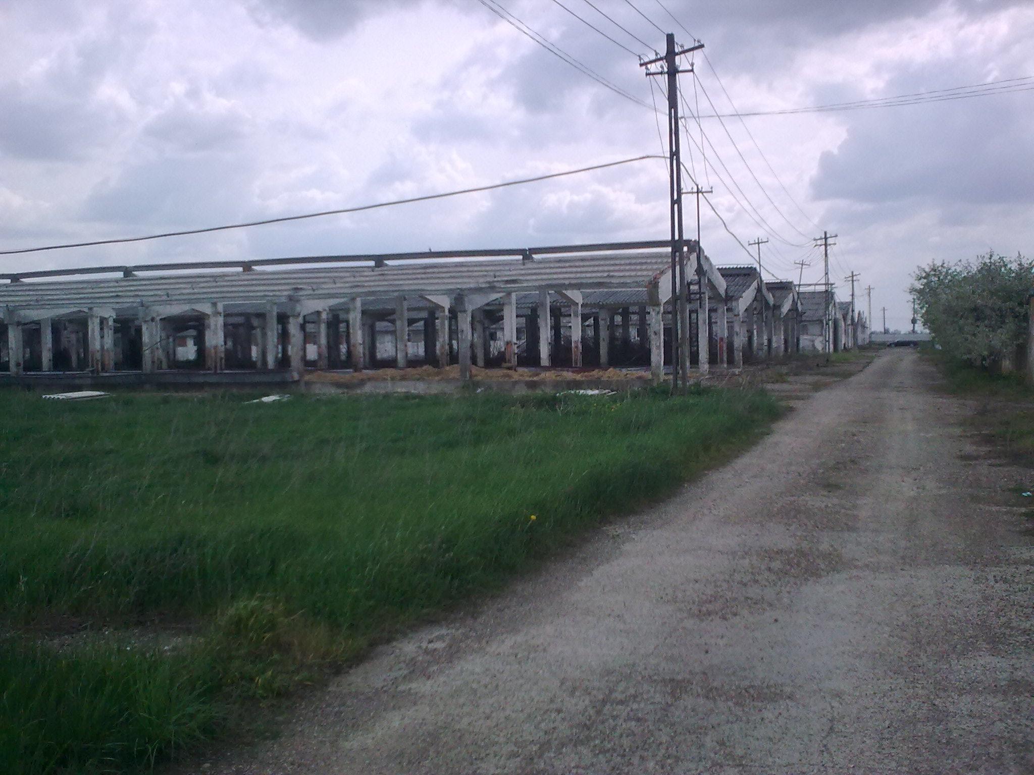Vendita terreno agricolo comune di suraia vrancea - Agenzie immobiliari bucarest ...